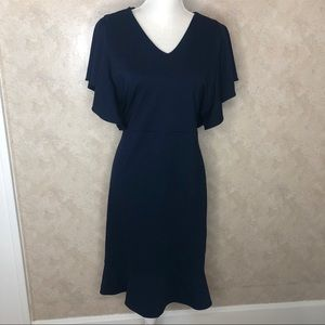 Ann Taylor Navy Ruffle sheath dress work career 14